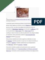 historia argentina.docx