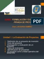 Formulación y Evaluación Privada de Proyectos
