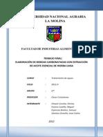TRABAJO FINAL DE AGUAS.docx