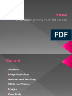 Knee Red Dot