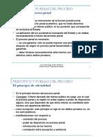 3 Principios y Formas Del Proceso