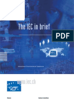 The IEC in Brief
