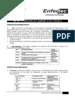 AP. 01 - Composição Quimica