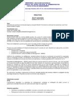 Syllabus Practica an 2