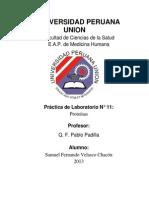 136772358 Laboratorio Nº 11 ALIDA