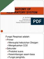Anatomi Sistem Respirasi-sari