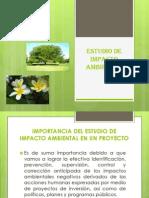 Estudio de Impacto Ambiental Cet