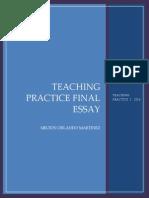 Milton Martinez Final Essay TP I IX Semester