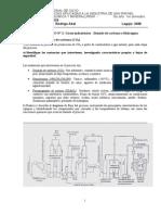 TPN 1 Gases industriales-CO2 e H2 -Terminado.doc