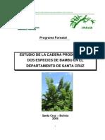 Bambu PCS Bambu Bolivia CIAT Last