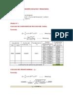Registro de Datos y Resultados-curva de Remanso