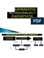 Nutrición y Energía