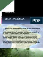 Selva Amazónica. Imágenes