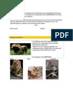 Animales Herbívoros
