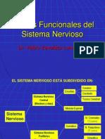 Clase Nº 06 Niveles Funcionales Del SN