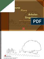 catalogodefaunaflorayarbolessingulares