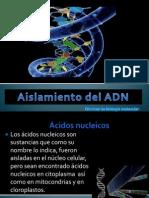 presentacin1aislamientodeladn222222-100930005547-phpapp02
