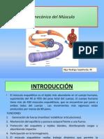 Biomecanica Del Musculo