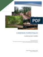 Caminos Forestales