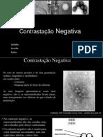 Contrastação Negativa Pronto (1)