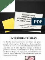 Enfermedades Transmitidas Por Alimentos Que Contienen Bacterias Gram