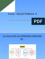 Seminario Salud Publica