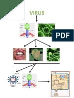 Mapamental Virus