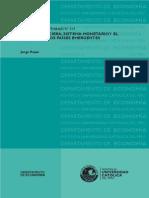 Crisis Financiera, Sistema Monetario y El Desafío de Los Países Emergentes