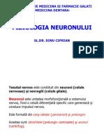 Neuron Ul