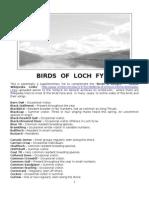 Birds of Loch Fyne