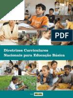 Diretrizes Curiculares Nacionais 2013[1]