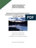Monografia de Bacharelado - Wander Ferreira - Agosto 2004