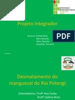 Apresentação_Projeto_Integrador