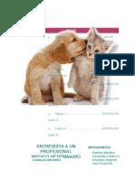 Informe Animales Menore