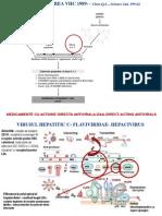 Curs 9 Hepatite Cu Transmitere Parenterala- VHC