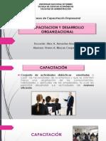 Capacitacion y Desarrollo Organizacional Exposicion (5)