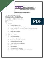 Summer Internship Report Format MBA