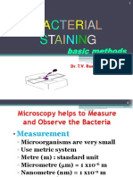 stainingbacteria-101004225924-phpapp02