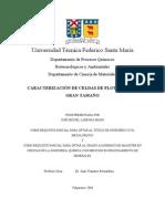 TESIS-CARACTERIZACION DE CELDAS DE FLOTACION DE GRAN TAMAÑO