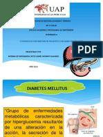 Diabet Mellitus 3 Exposicion