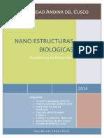 INFORME (Nano-Estructuras Biologicas)