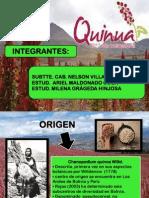 Grupo - Quinua
