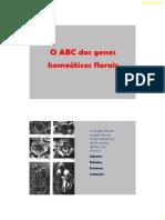 BDP_21_-_ABC.pdf