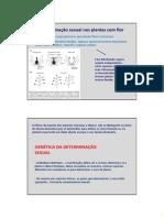 BDP_25_-_Determinacao_sexual.pdf