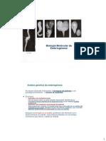 BDP_12_25_03_2014_BiolMolEmbriog_Padr_Axial_e_Radial.pdf