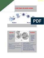 BDP_26_-_PCD.pdf