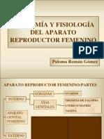 Anatoma y Fisiologa Del Aparato Reproductor Femenino 1193079935919884 5