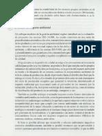 Costos Ambientales-Sapag.pdf