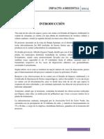 informe impacto