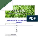 Los Beneficios Del Romero en La Memoria a Largo Plazo